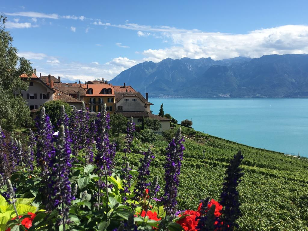 Lavaux - best places to visit in Switzerland