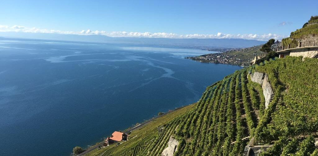 lavaux 1 - Amazing destinations to travel around in Switzerland