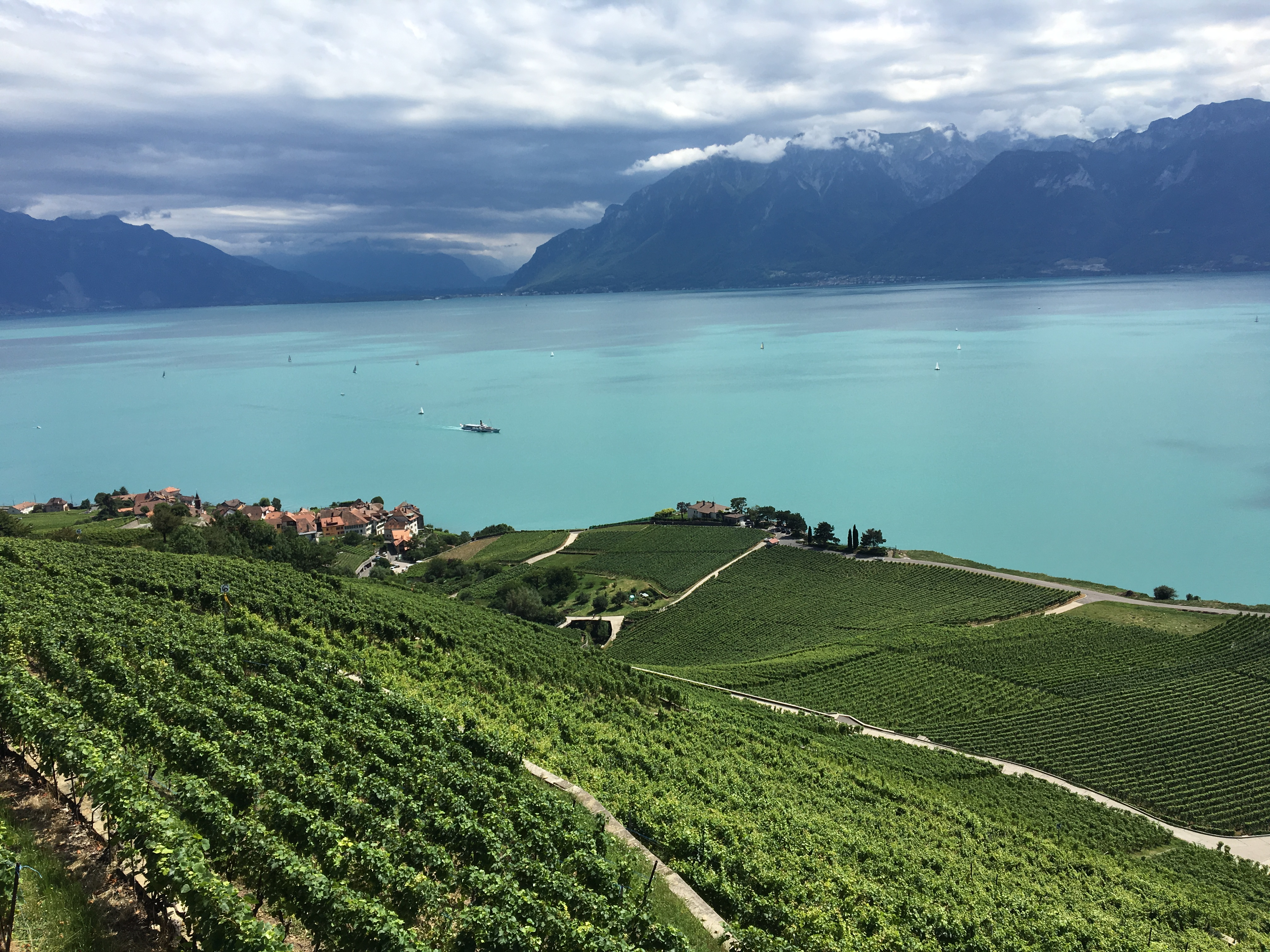 Lavaux 1 - Best places to visit in Switzerland