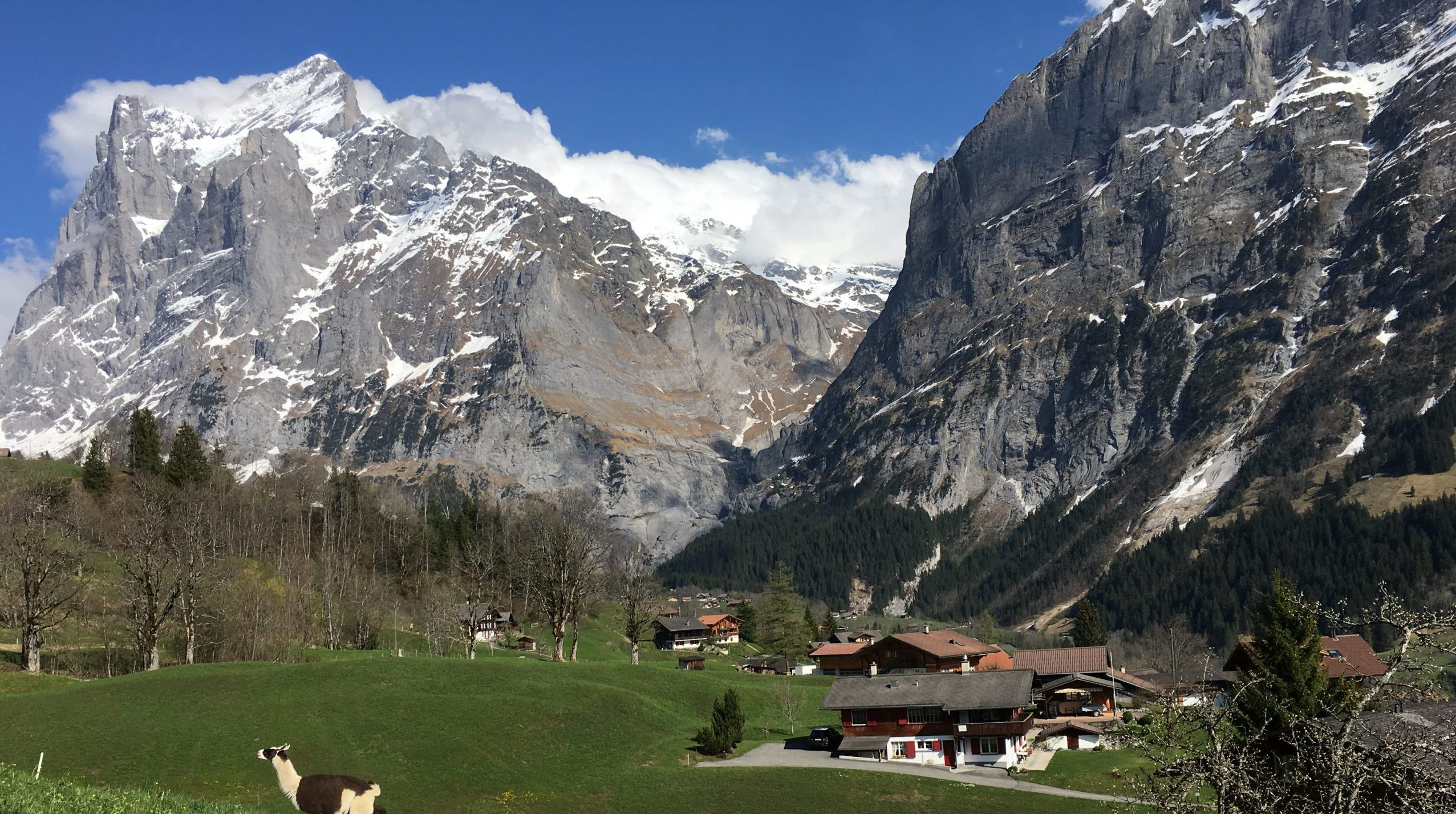 Grindelwald - Amazing Destinations to Travel Around in Switzerland