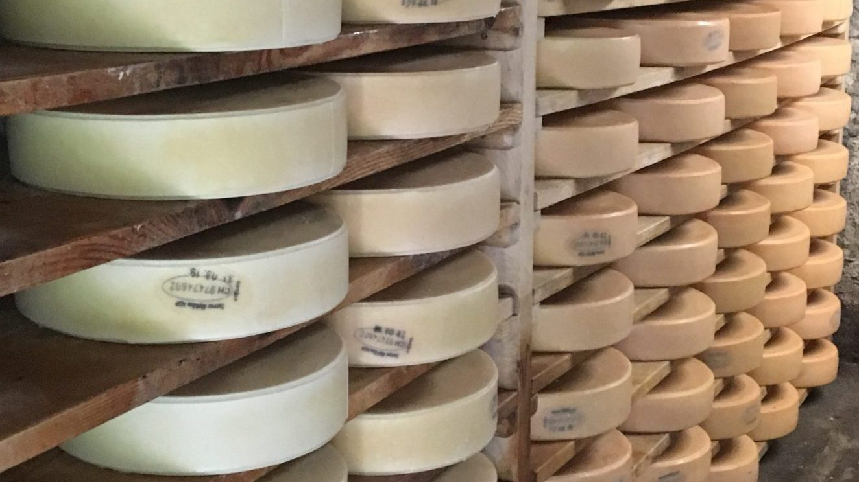 Best Swiss cheese - alpcase